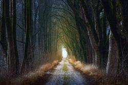 Path of Deliverance